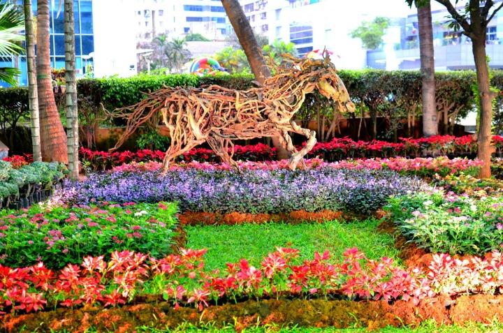 Horse. jpg